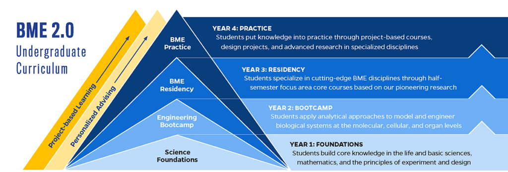 The BME 2.0 pyramid explains how the undergraduate program progresses throughout four years.