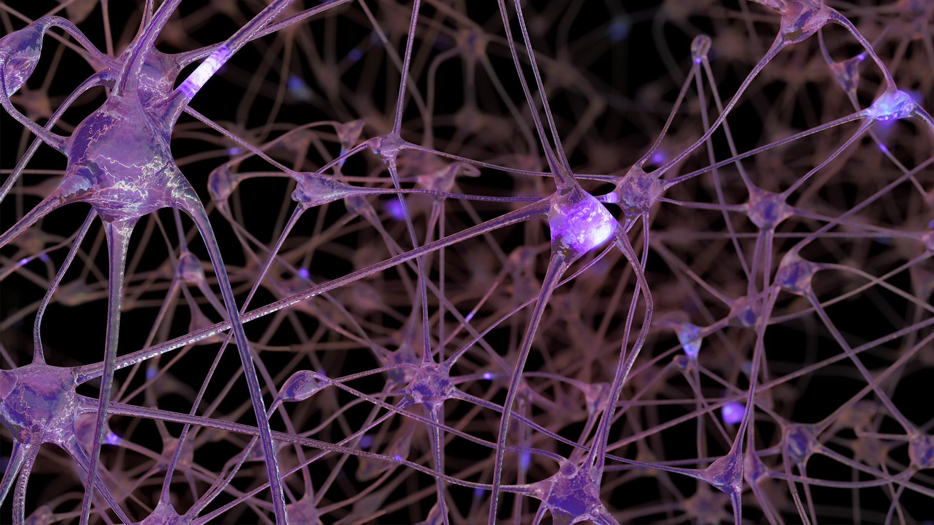 The image shows a 3D rendering of a network of neuron cells and synapses.