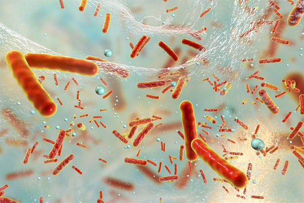 An artist rendering of sepsis under a microscope.