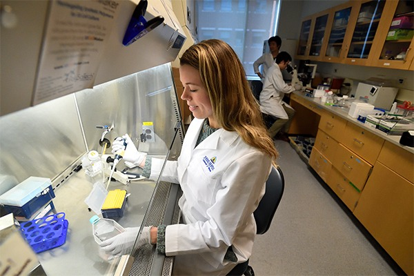 A female student is working with a pipette under a hood in a laboratory.