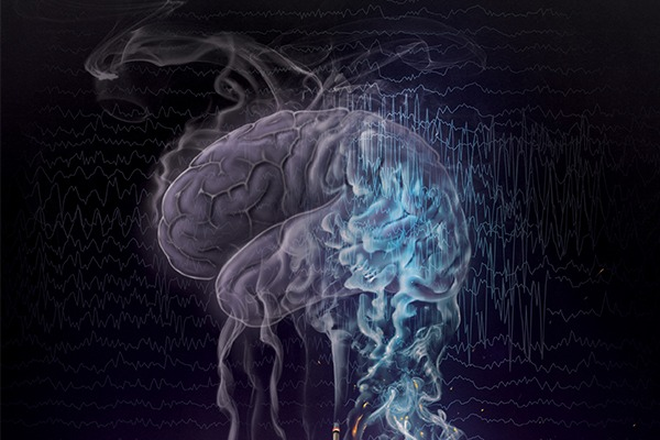 A computer rendering shows an image of the brain.